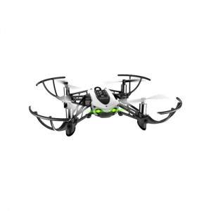 Quadrone Parrot Mambo Fly